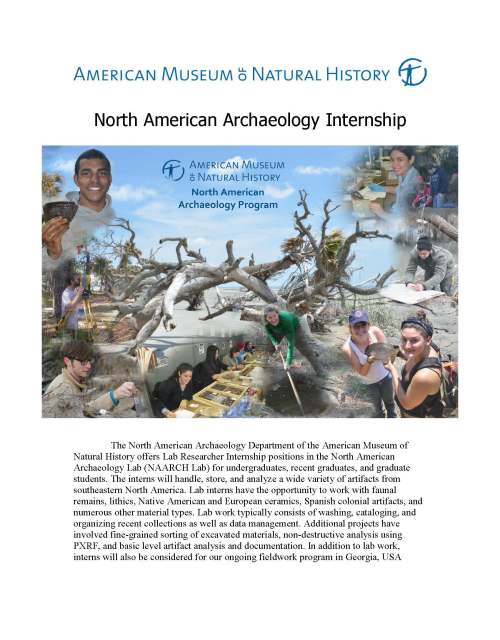 NAARCH Internship Announcement Summer 2015_Page_1